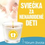 FZ_sviecka_in