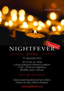 141113_Nitra_Flyer
