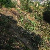 ohradový múr - pôvodný stav