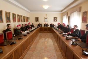 Ad limina 2015, navsteva Kongregacie pre kauzy svatych